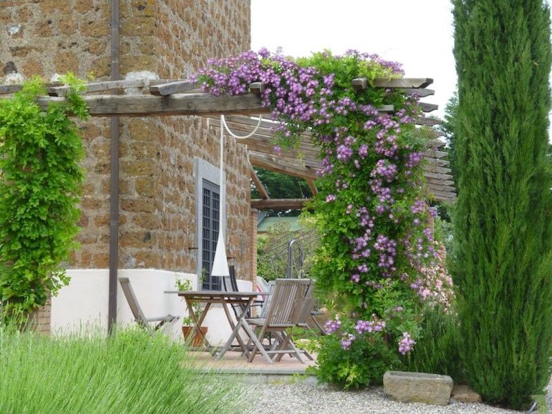 Pérgola de jardín con adornos de Clemátide