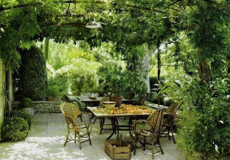 Parra de vino dentro de una pérgola de jardín